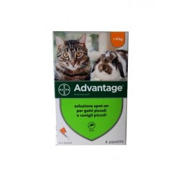 Advantage 40 Gatto e...