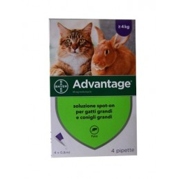 Advantage 80 Gatto e...